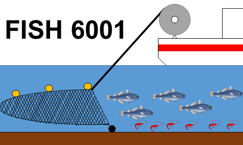 FISH 6001: Ecology, Management, and Practice of North Atlantic Fisheries